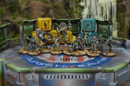 USAriadna Army Pack Miniatures in game